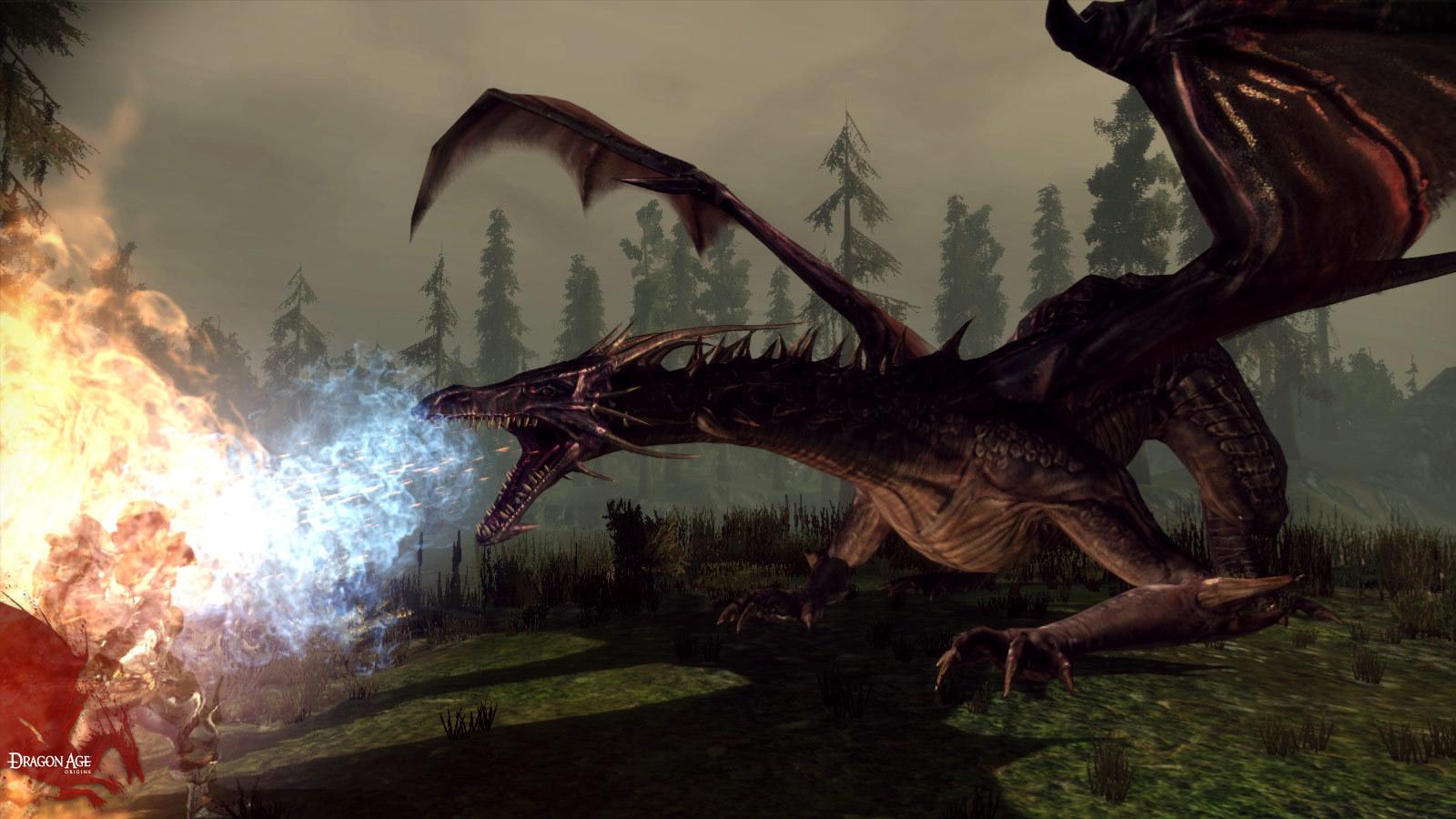 Dragon Age: Origins Screenshot 3